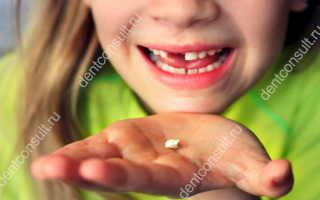 Когда начинают и заканчивают выпадать молочные зубы?